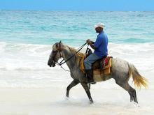Horseback riding in St. Maarten